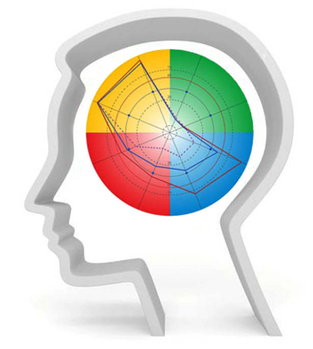 PRISM brainmapping