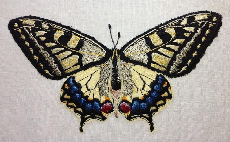 Swallowtail Butterfly Design