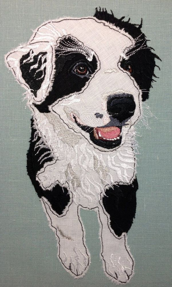 Australian Shepherd Puppy Design