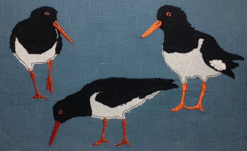 Oystercatchers Design