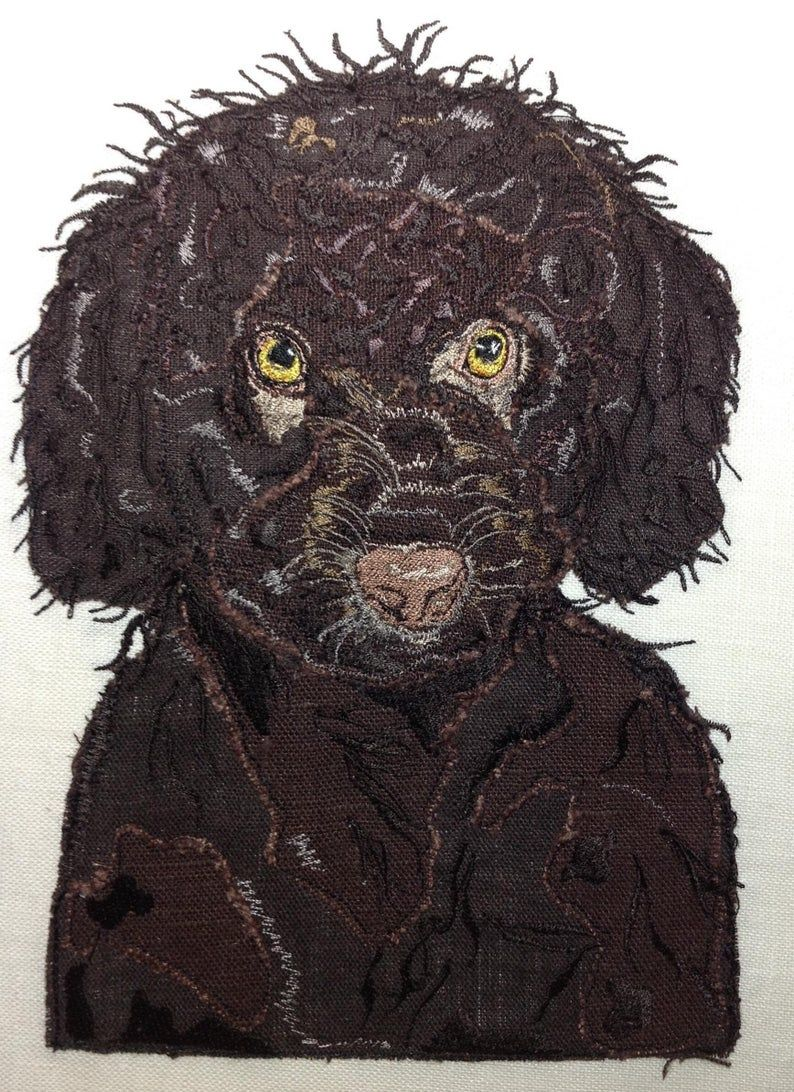 Cockapoo Design