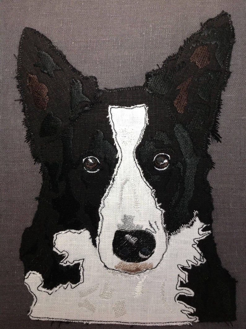 Border Collie Design