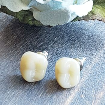 Human Denture Teeth Stud Earrings