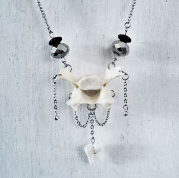 Fox Vertebrae Bone And Tooth Victorian Style Necklace