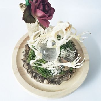 Frog Skeleton With Clear Quartz Crystal Ball In Dome