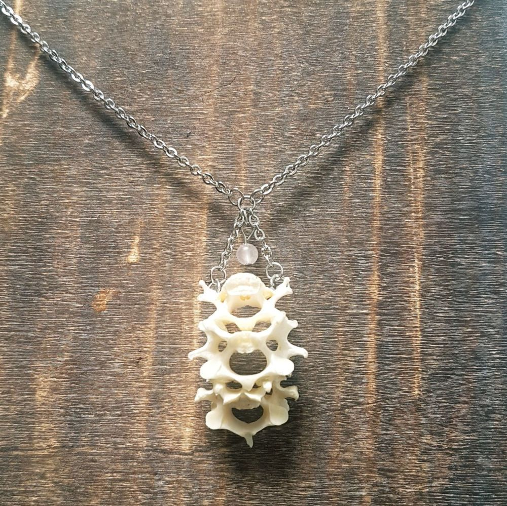 Hare Vertebrae Necklace With Rose Quartz
