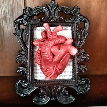 Decorative Resin Frame With Sculpted Heart - Anatomy