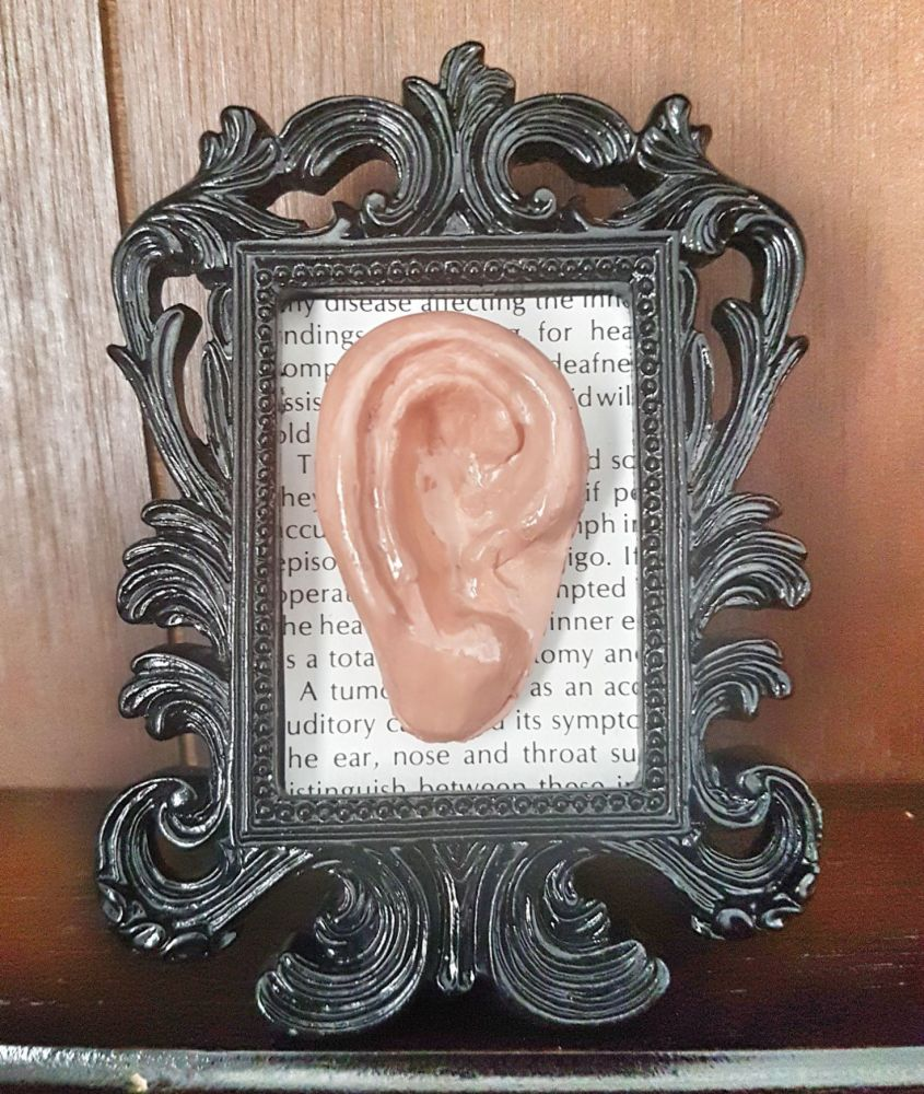 Decorative Resin Frame With Sculpted Ear - Anatomy