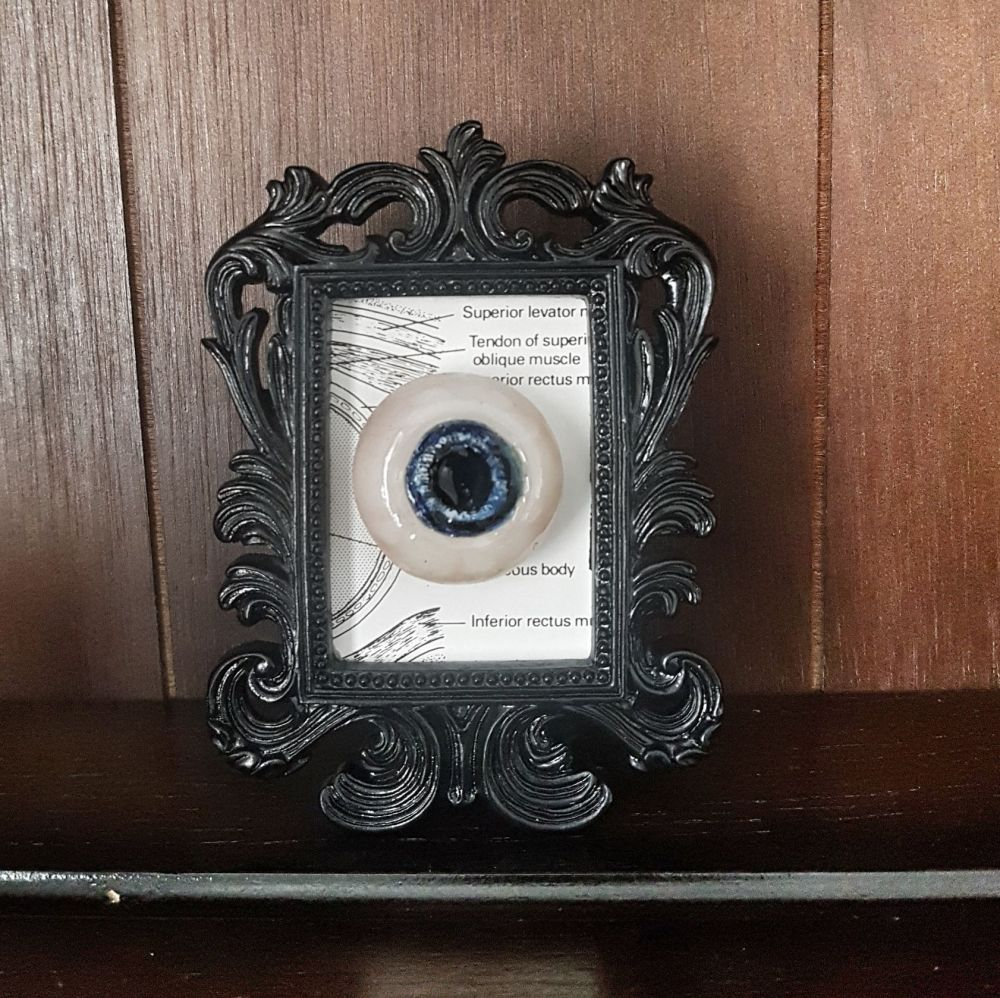 Decorative Resin Frame With Sculpted Eye- Anatomy
