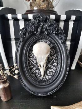 Jackdaw Skull In Ornate Frame