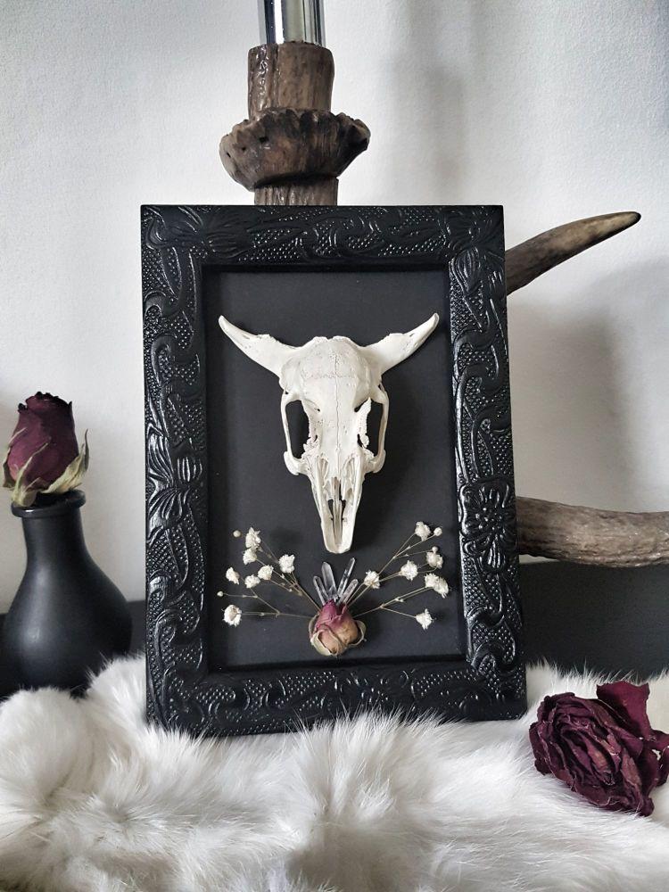 Occult Style Rabbit Skull In Frame