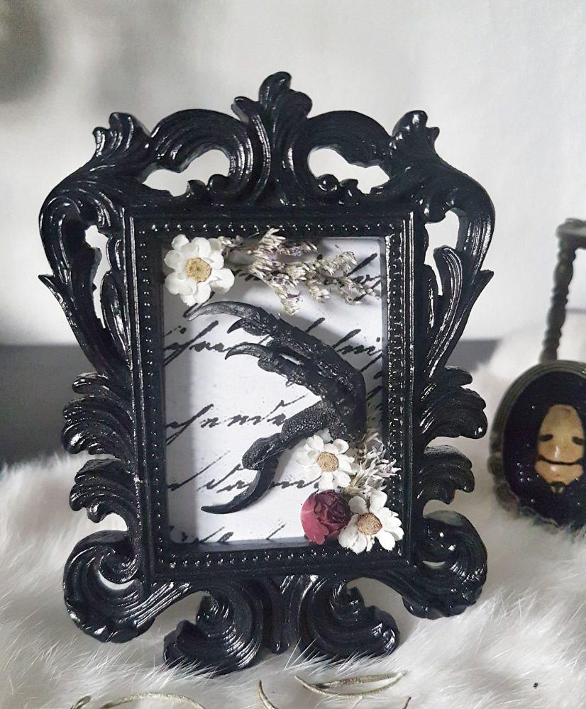 Rabbit Skull In Ornate Frame