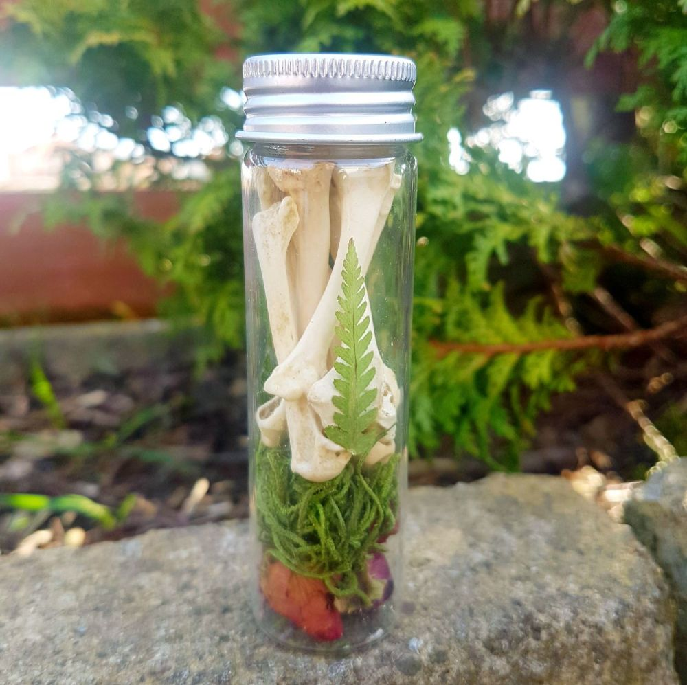 Woodland Curios -  Bottle With Rabbit Bones