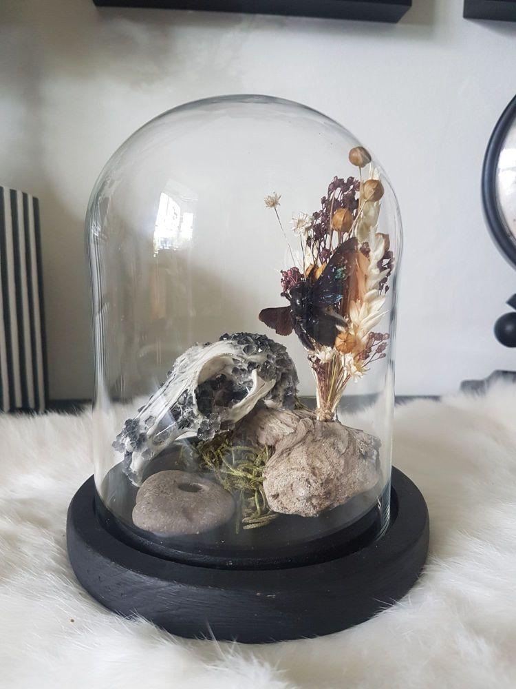 Obsidian Inspired Crystallized Skull Dome