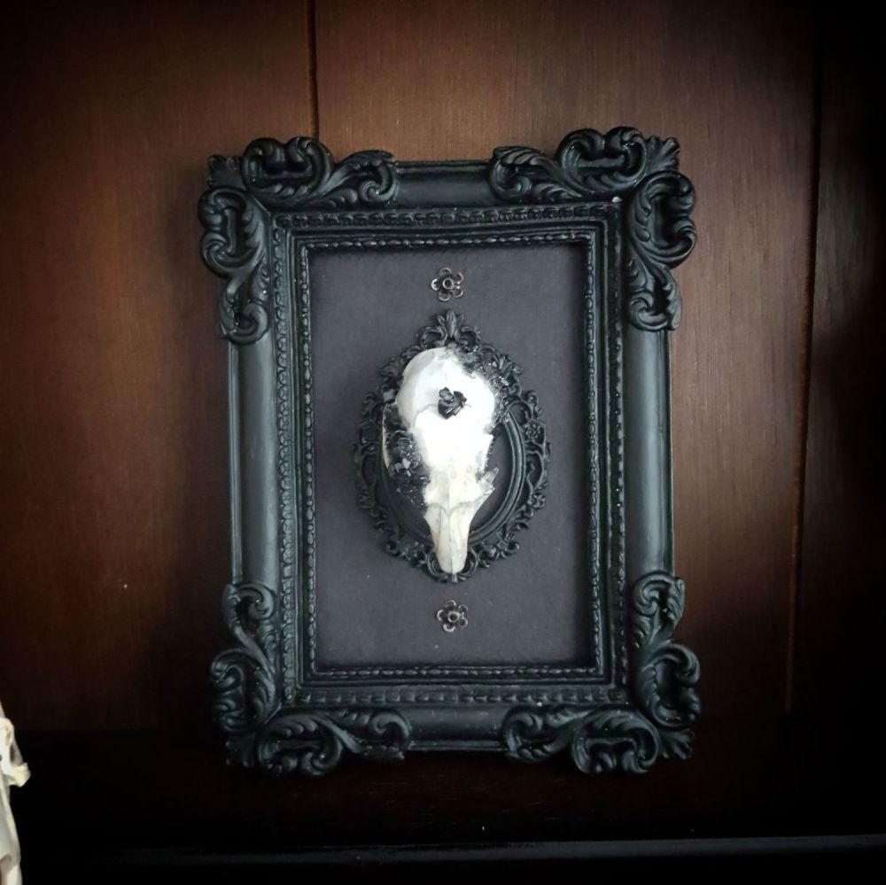 Obsidian Inspired Crystallized Skull Frame