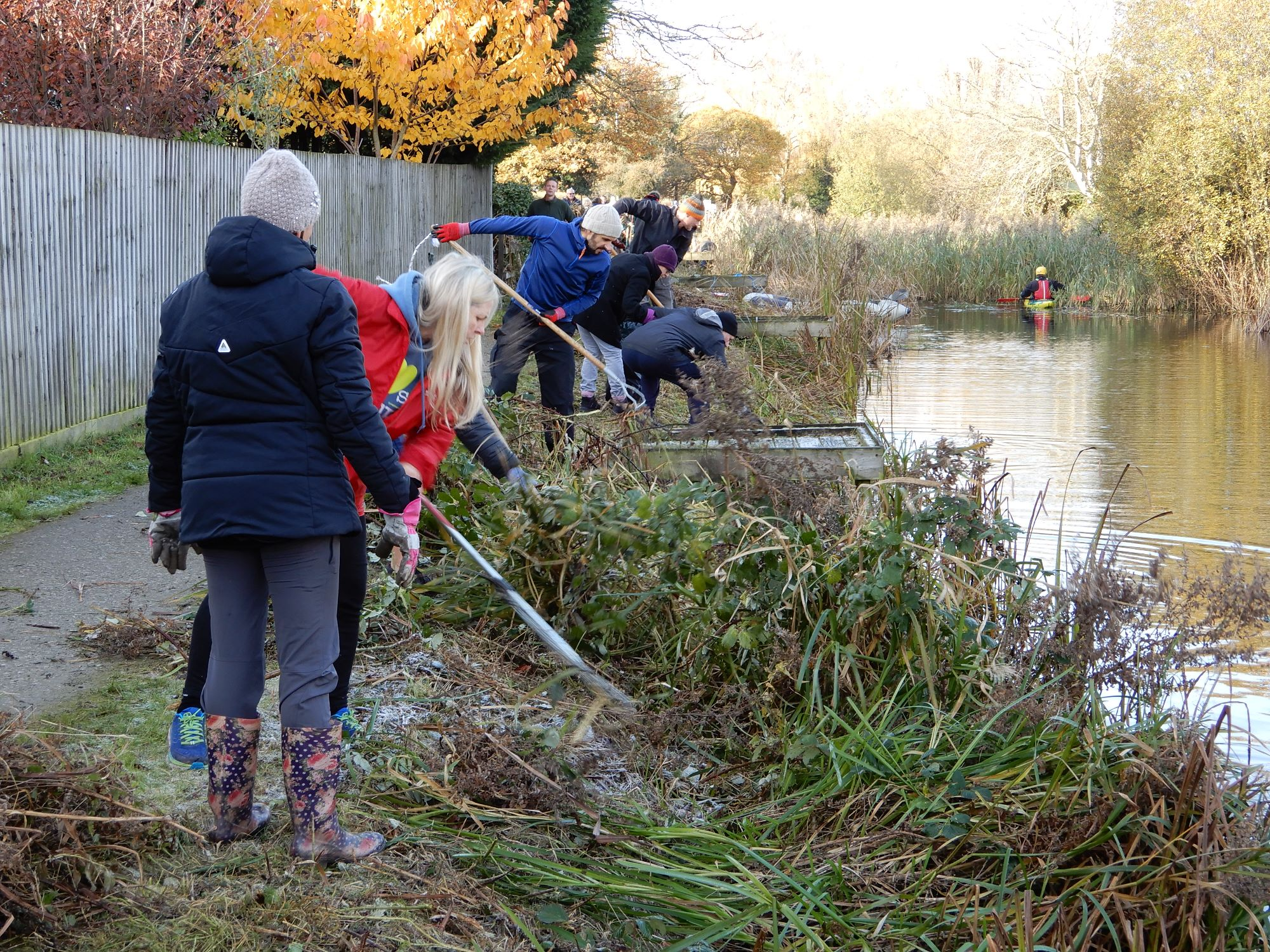 Friends of the Hook Canal Clearing