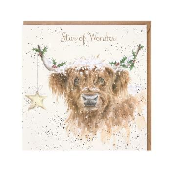 'Highland Star' Cattle Christmas Card - 15cm x 15cm