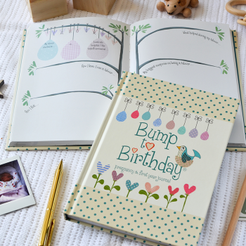 Bump to Birthday. Pregnancy & 1st Year Journal.