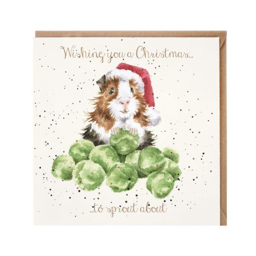 'Sprouts' Greedy Guinea Pig Christmas Card by Wrendales Hannah Dale - 15cm