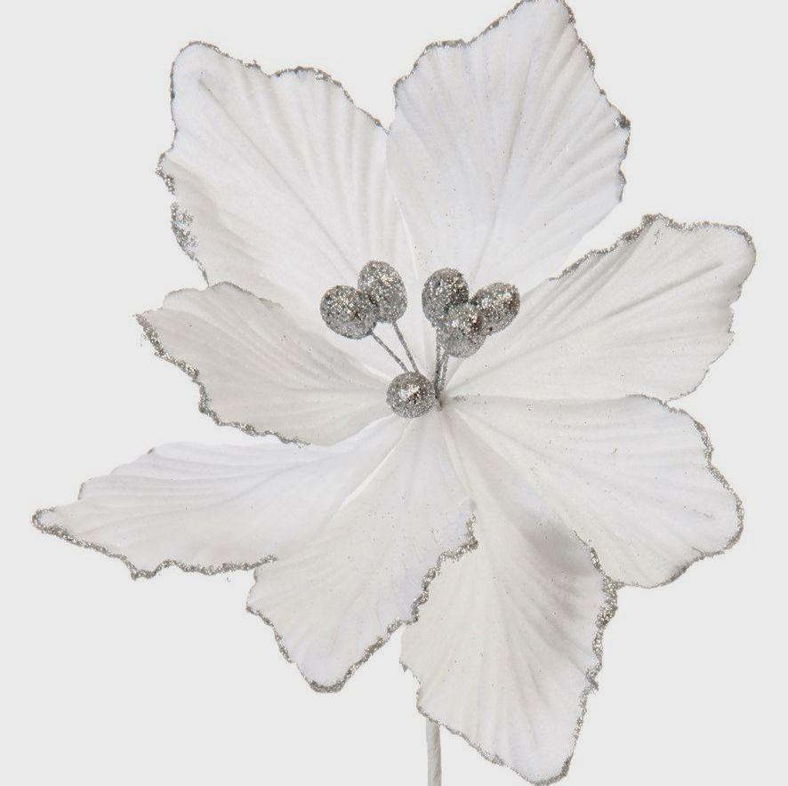 White Velvet magnolia stem