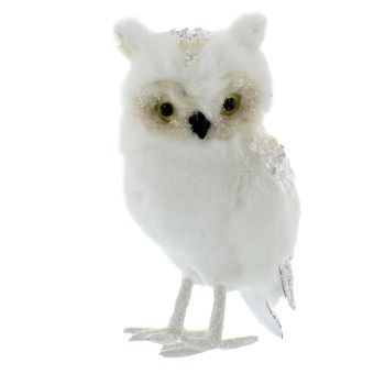 Feathered Fluffy Owl