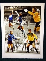 Peter Shilton Signed 12x16 England photo