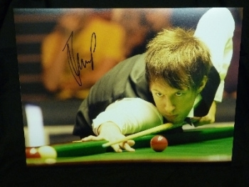 Judd Trump signed 12x16 Photograph D