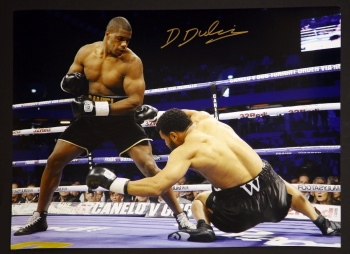 Daniel Dubois Hand Signed 12x16 Boxing Photograph
