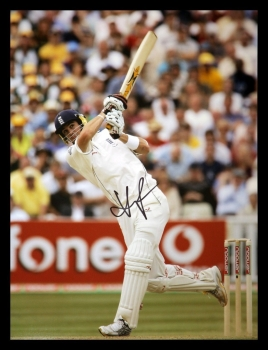 *New* Kevin Pietersen  Signed Cricket 12x16 Photograph : B