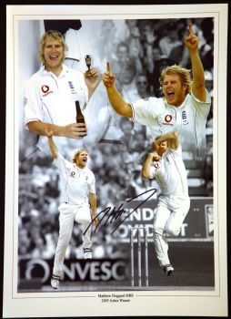 Matthew Hoggard Cricket Hand Signed 12x16 Photograph
