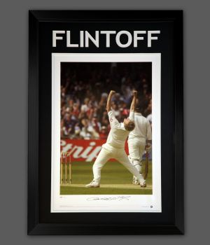 Freddie Flintoff England Cricket Signed Photograph In A Framed Presentation.