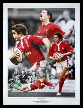 Shane Williams Rugby 12x16 Signed Montage