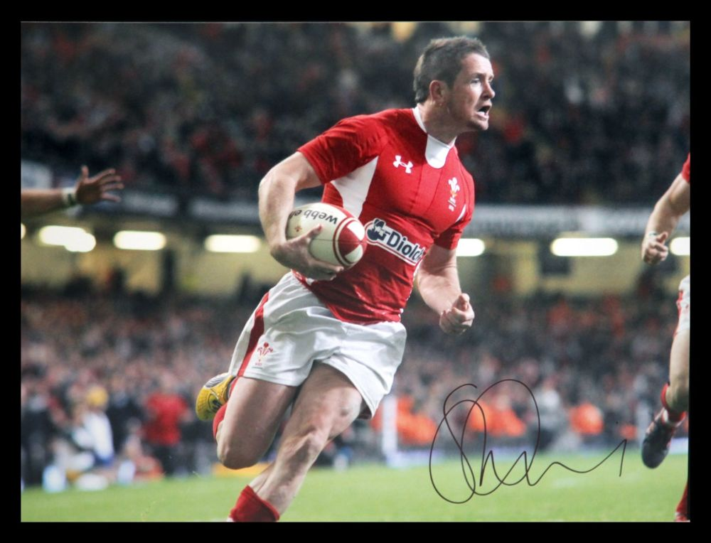 Shane Williams Rugby 12x16 Signed Photograph :  D