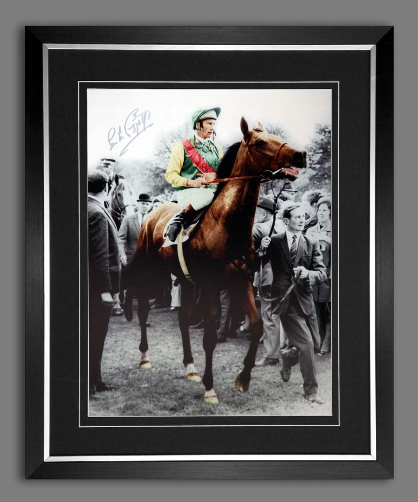 Lester Piggott And Nijinsky Signed And Framed Horse Racing  Photograph : B