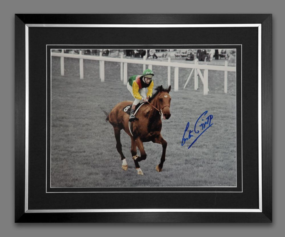 Lester Piggott And Nijinsky Signed And Framed Horse Racing  Photograph : A