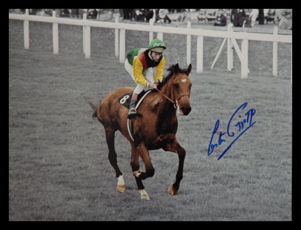 Lester Piggott And Nijinsky Signed Horse Racing  Photograph : A
