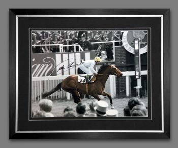 Willie Carson Signed And Framed Horse Racing  Photograph