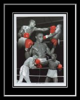 Herol Bomber Graham Signed And Framed 12x16 Boxing Photograph Montage
