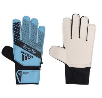 Peter Shilton Signed Predator Goalkeeper glove : Pre Order