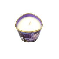 Shunga Massage Candle Libido (Exotic Fruit)