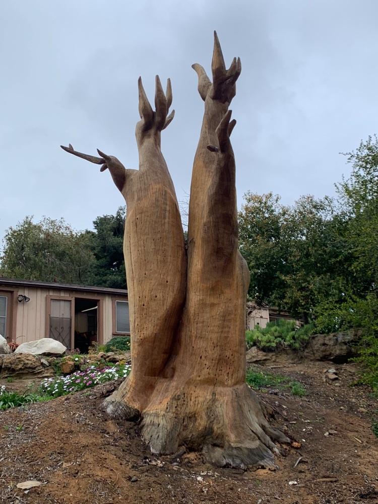 Faux Baobab
