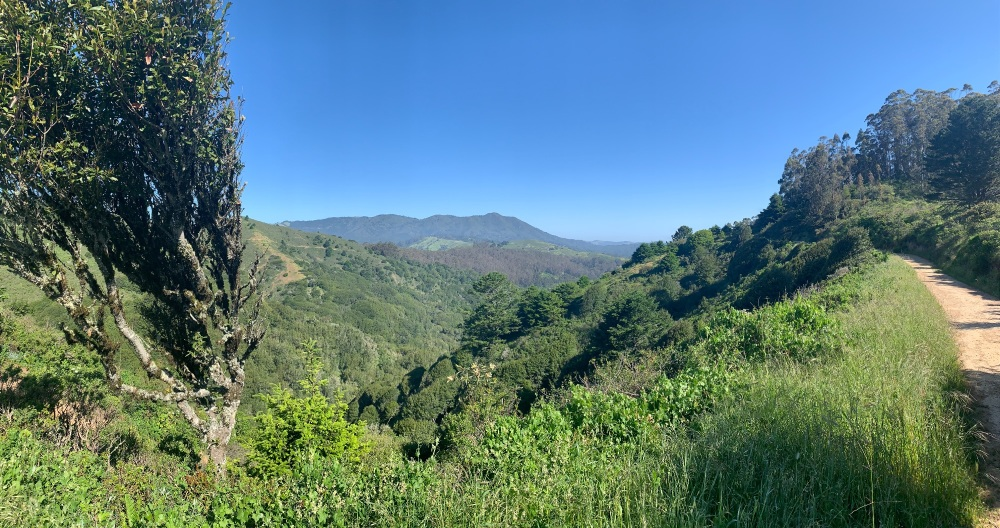 The Miwok Trail