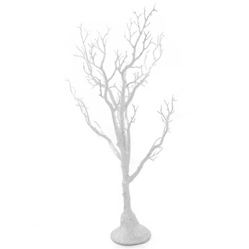 White Manzanita Trees
