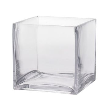 Clear Cube Vase