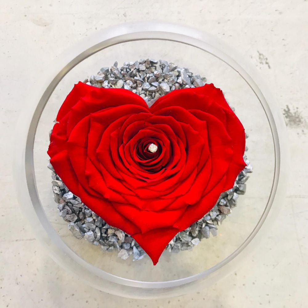 Limited Edition - Heart Shaped Single Frozen Rose