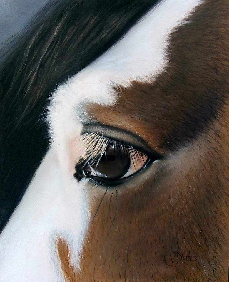 kez eye