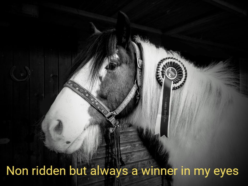 winner in my eyes