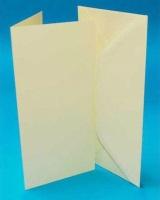 DL Ivory Card Blanks & Envelopes