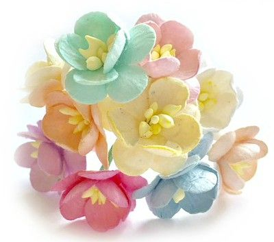 Mulberry Paper Cherry Blossom Flowers - Wire Stem 25mm Mixed Pastels
