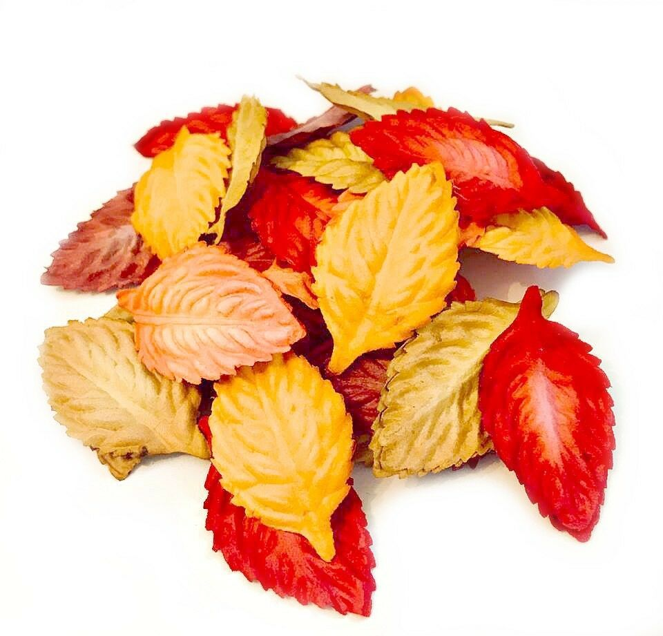 Mulberry Paper Autumn Leaves